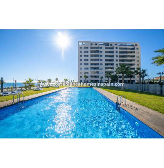 Apartment - Endursölu - Torrevieja - Orihuela Costa