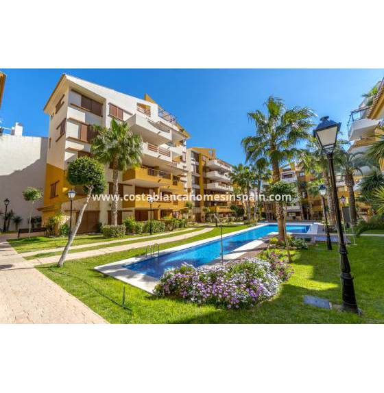Apartment - Nouvelle construction - Torrevieja - La Recoleta