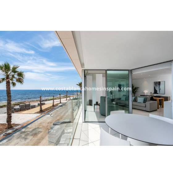 Apartment - Nybygg - Torrevieja - Torrevieja