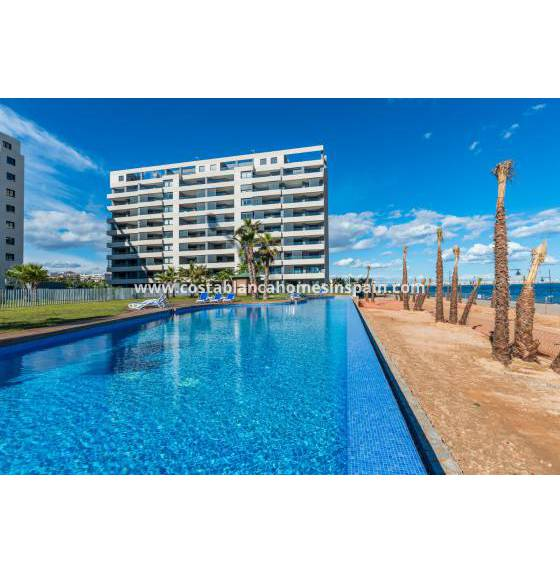 Apartment - Nýbygging - Torrevieja - Orihuela Costa