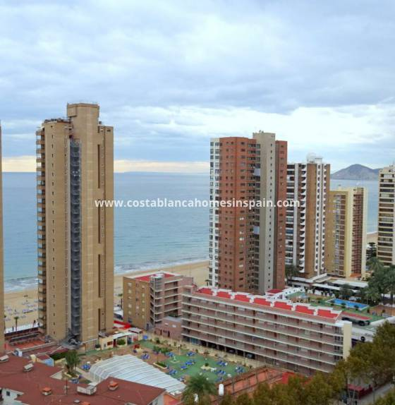 Apartment - Revente - Benidorm - Levante