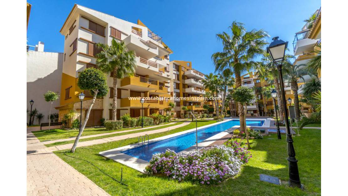 New Build - Apartment - Torrevieja - La Recoleta