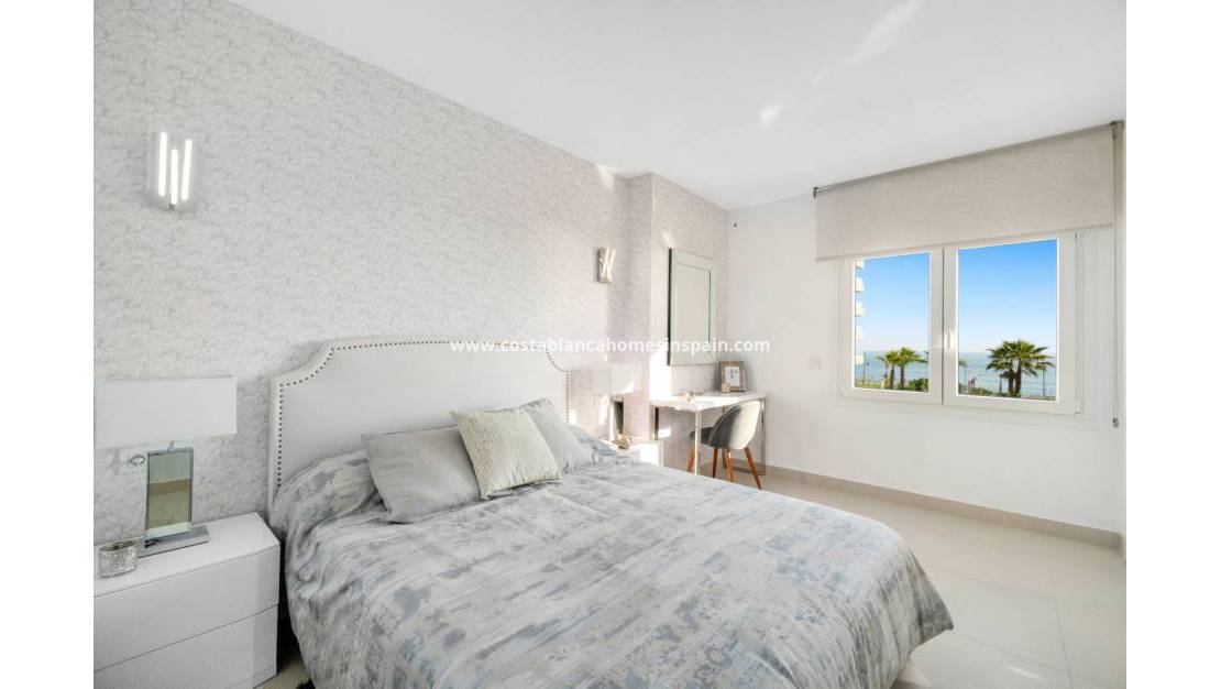 Nýbygging - Apartment - Torrevieja - Orihuela Costa